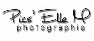 logo client picsellem
