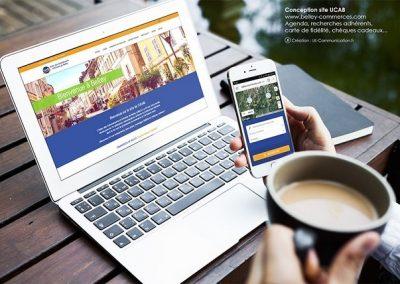 Site internet UCAB